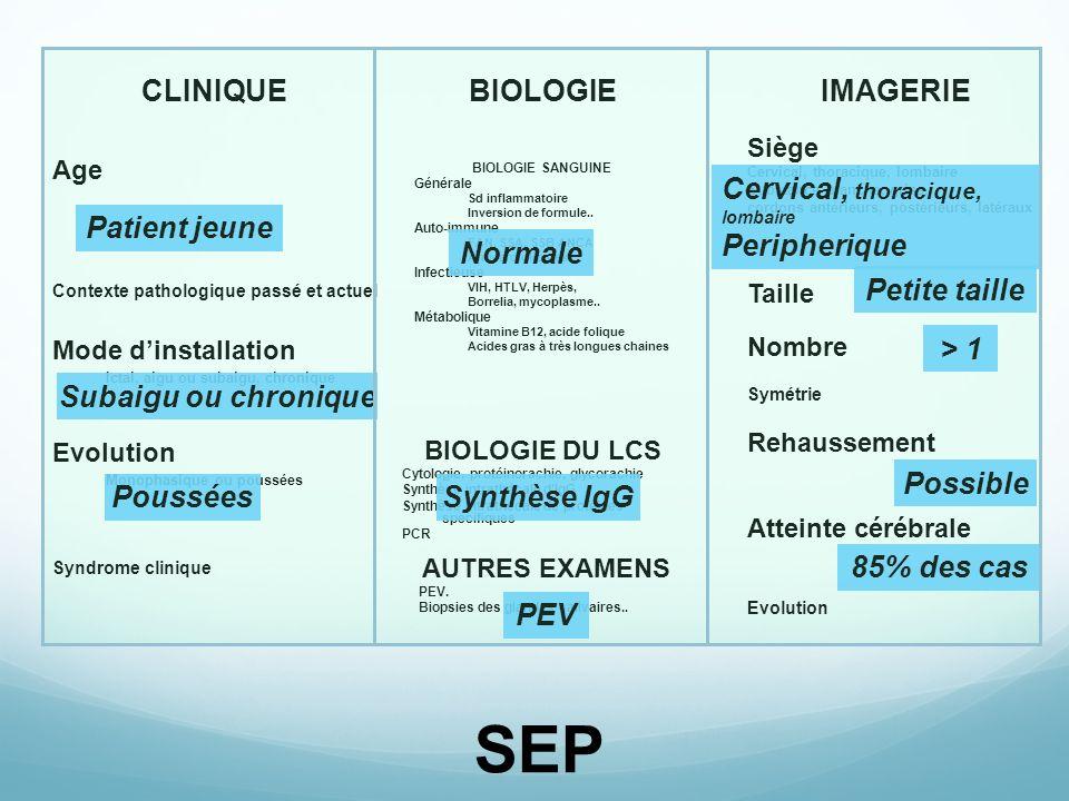 SEP CLINIQUE BIOLOGIE IMAGERIE Cervical, thoracique, lombaire