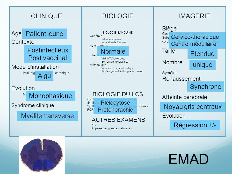 EMAD CLINIQUE BIOLOGIE IMAGERIE Patient jeune Postinfectieux Normale