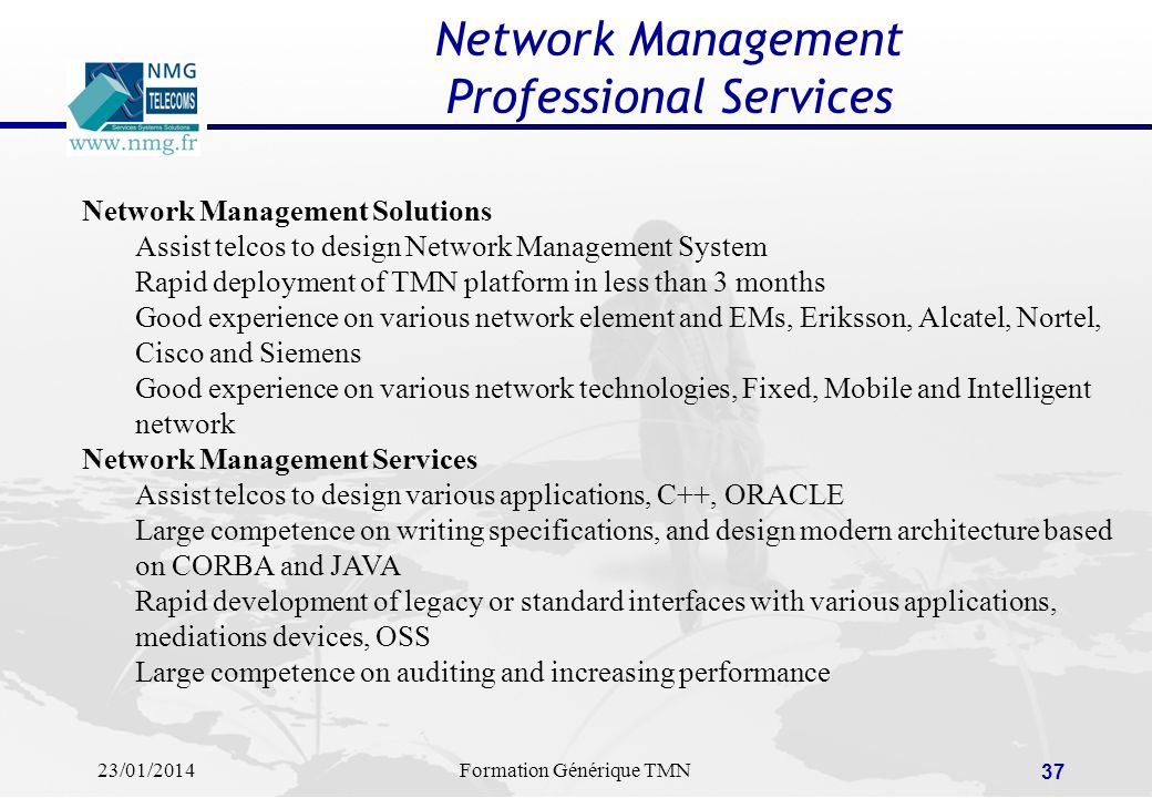 Network Management Professional Services