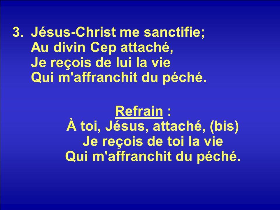 Jésus-Christ me sanctifie; Au divin Cep attaché, Je reçois de lui la vie Qui m affranchit du péché.