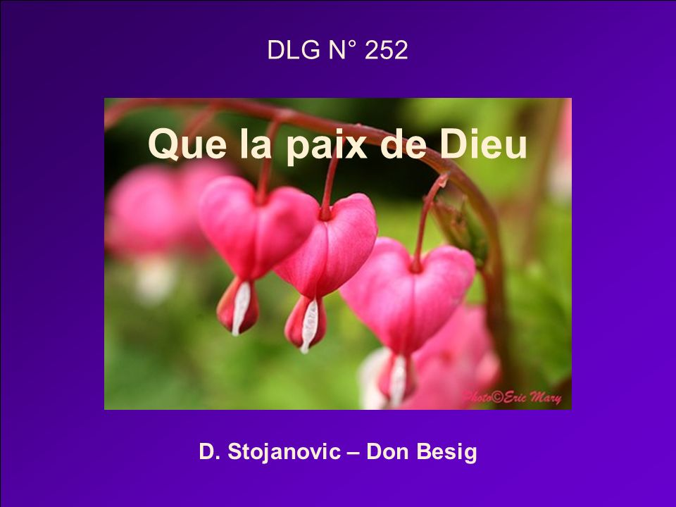 DLG N° 252 Que la paix de Dieu