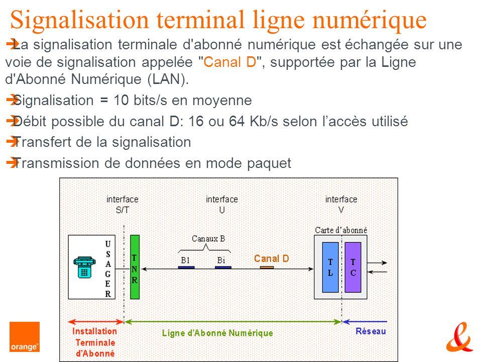 Signalisation terminal ligne numérique