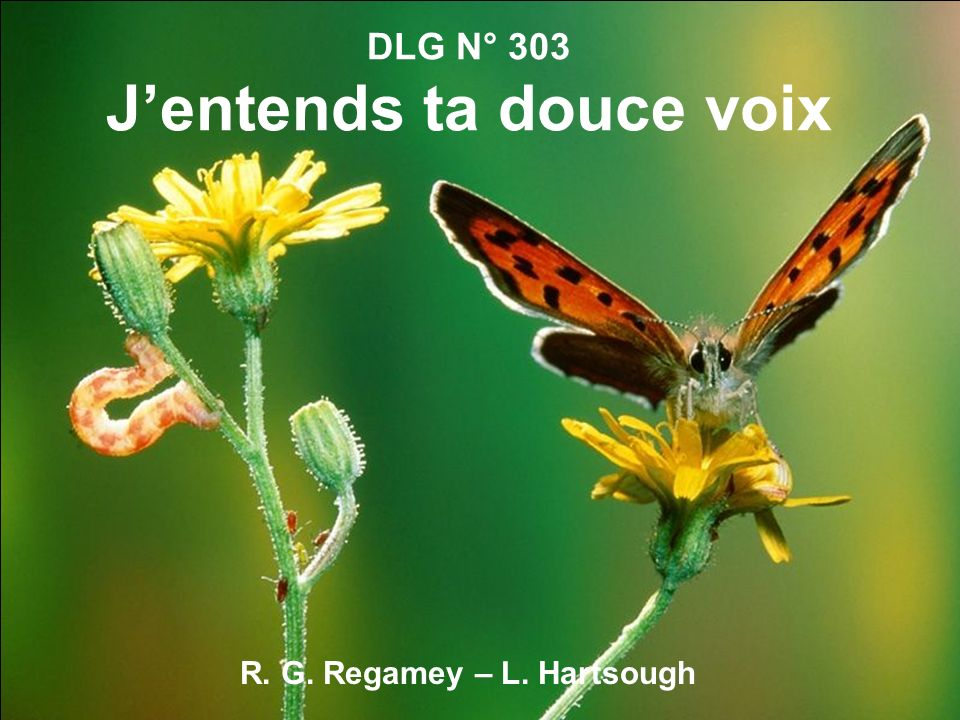 DLG N° 303 J'entends ta douce voix