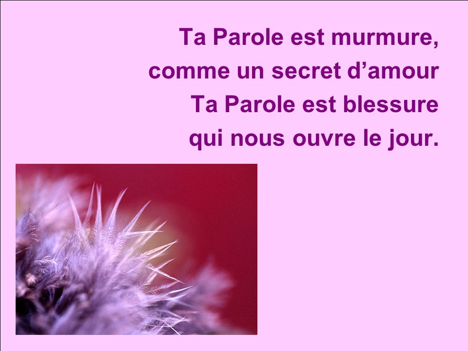Ta Parole est murmure, comme un secret d'amour Ta Parole est blessure qui nous ouvre le jour.