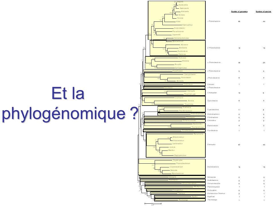 Et la phylogénomique