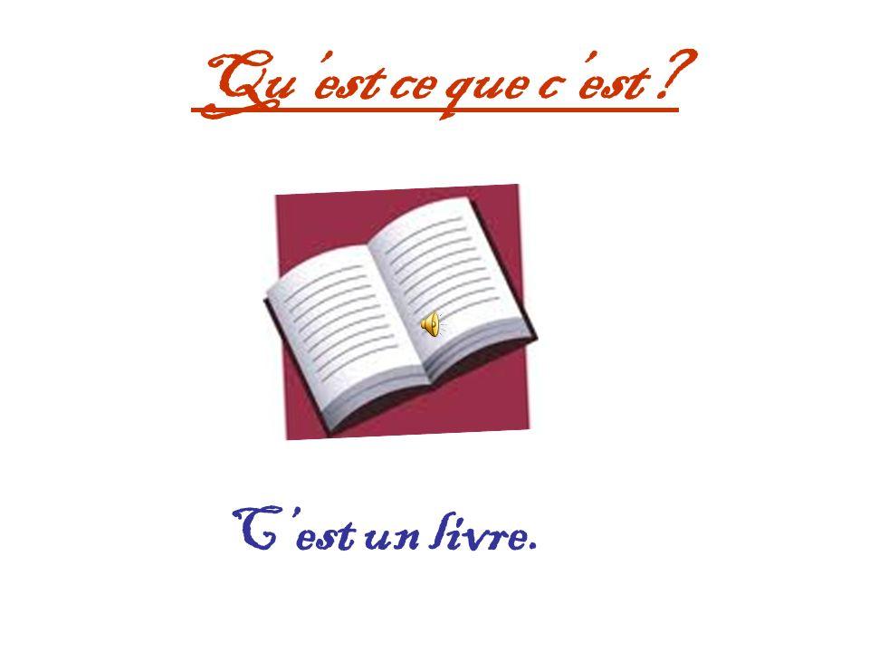 Qu'est ce que c'est C'est un livre.