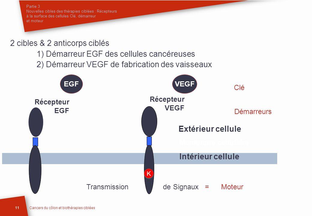 Partie 3 Nouvelles cibles des thérapies ciblées : Récepteurs à la surface des cellules Clé, démarreur et moteur