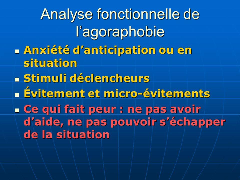Analyse fonctionnelle de l'agoraphobie