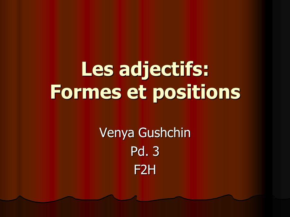 Les adjectifs: Formes et positions