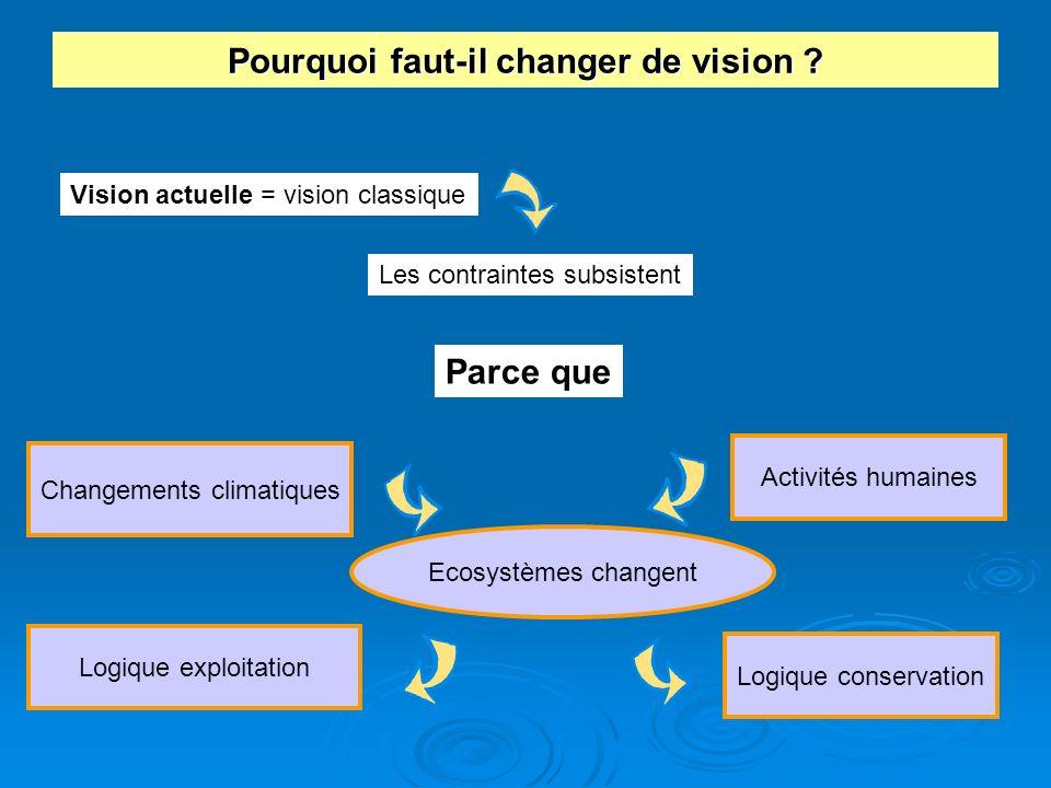 Pourquoi faut-il changer de vision