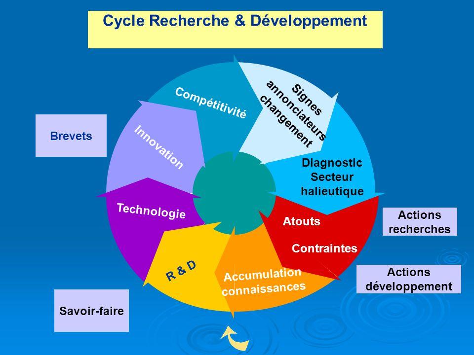 Cycle Recherche & Développement