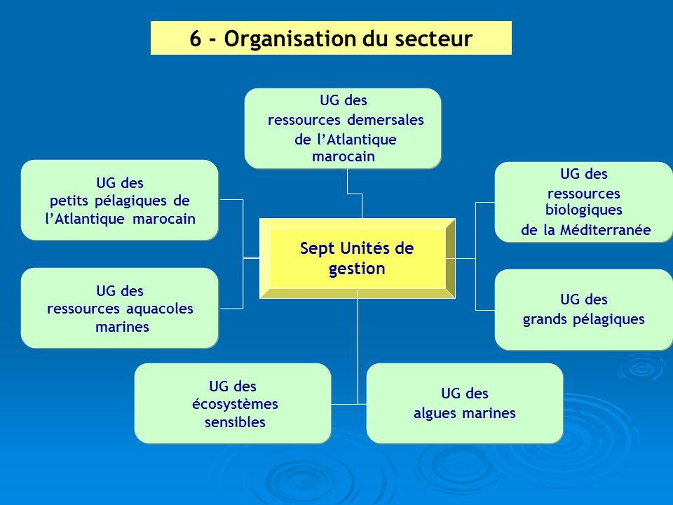 6 - Organisation du secteur