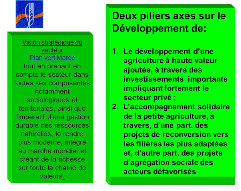 Deux piliers axés sur le Développement de: