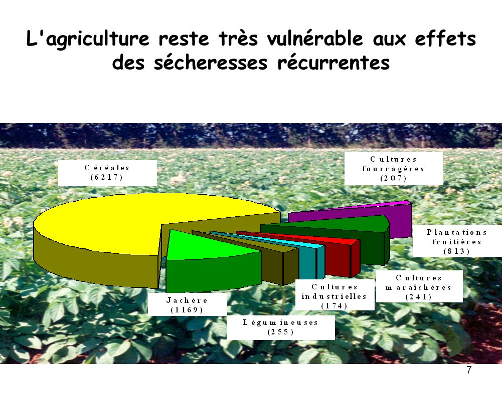 L agriculture reste très vulnérable aux effets des sécheresses récurrentes