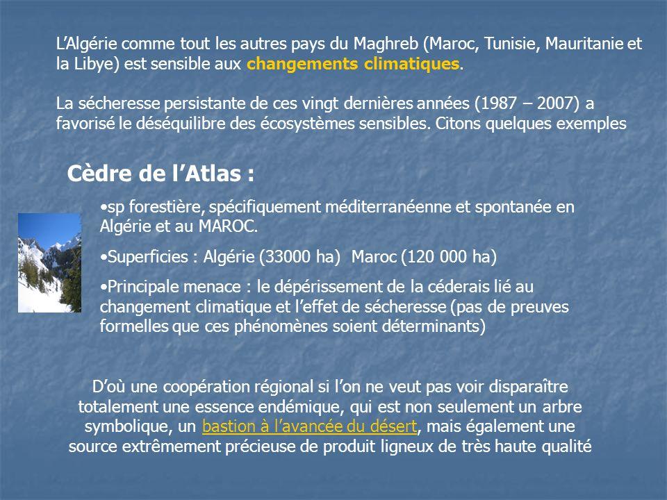 L'Algérie comme tout les autres pays du Maghreb (Maroc, Tunisie, Mauritanie et la Libye) est sensible aux changements climatiques.