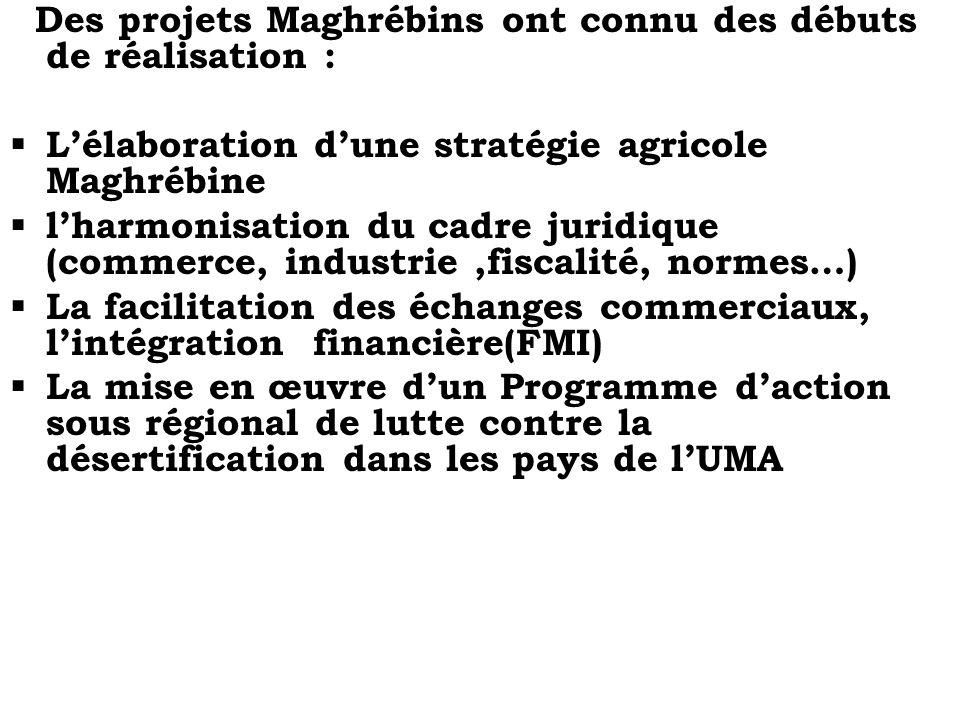 Des projets Maghrébins ont connu des débuts de réalisation :