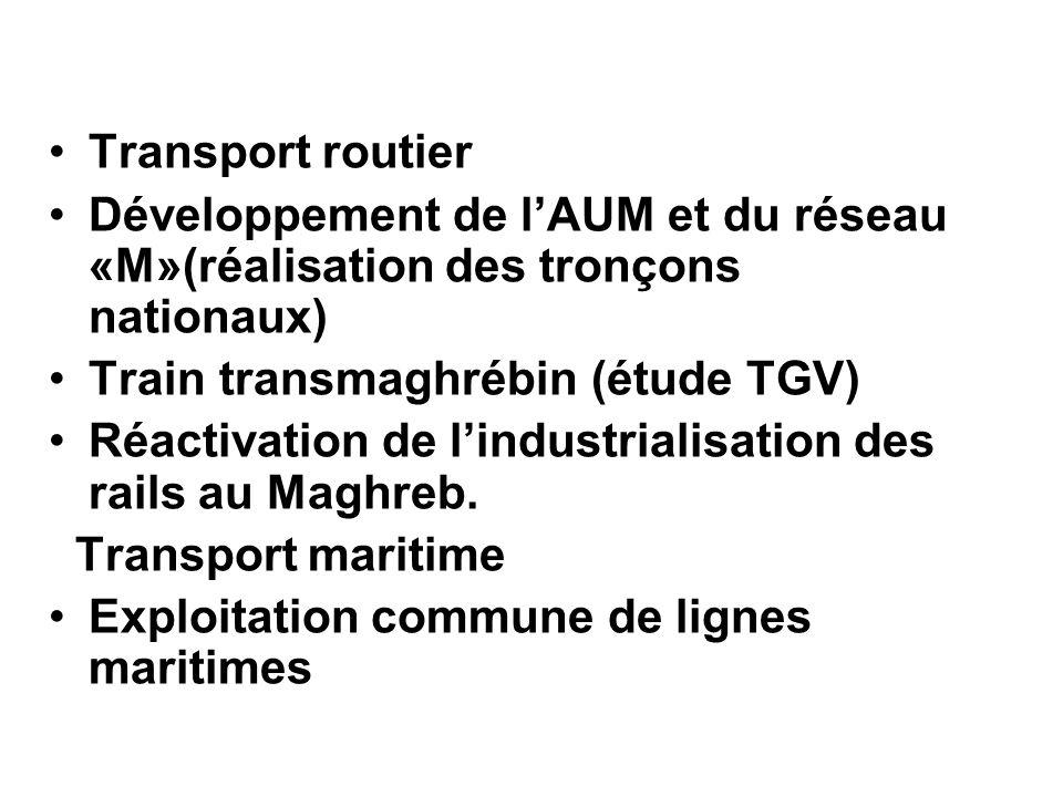 Transport routier Développement de l'AUM et du réseau «M»(réalisation des tronçons nationaux) Train transmaghrébin (étude TGV)