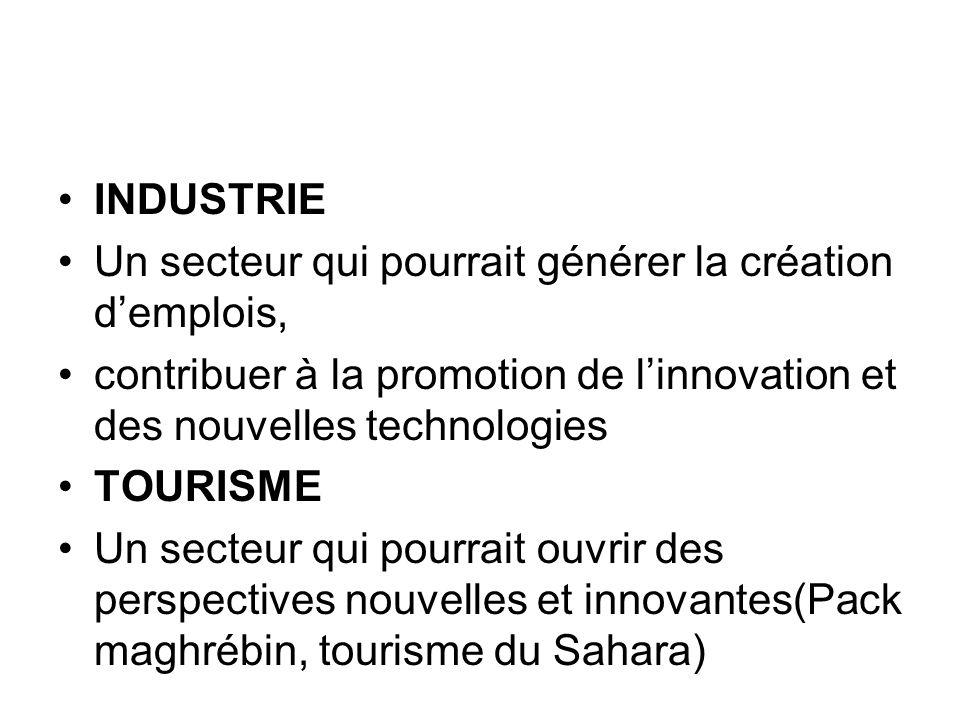 INDUSTRIE Un secteur qui pourrait générer la création d'emplois, contribuer à la promotion de l'innovation et des nouvelles technologies.