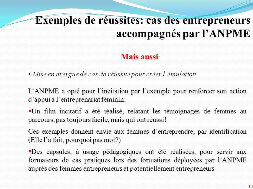 Exemples de réussites: cas des entrepreneurs accompagnés par l'ANPME