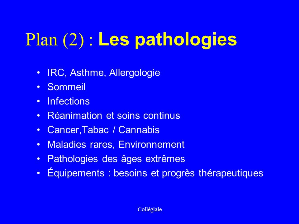 Plan (2) : Les pathologies