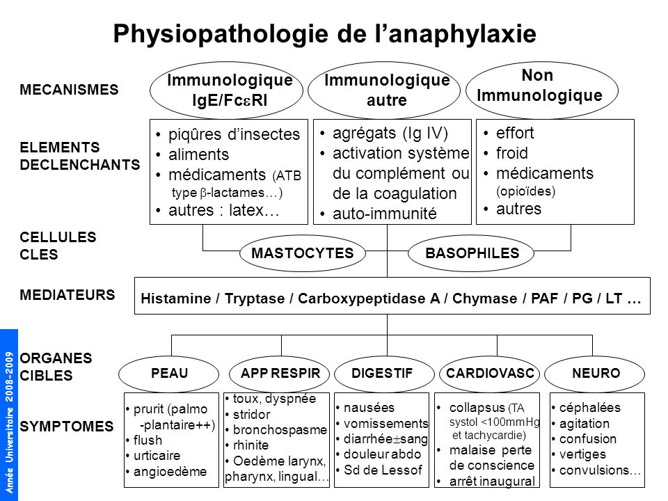 Physiopathologie de l'anaphylaxie