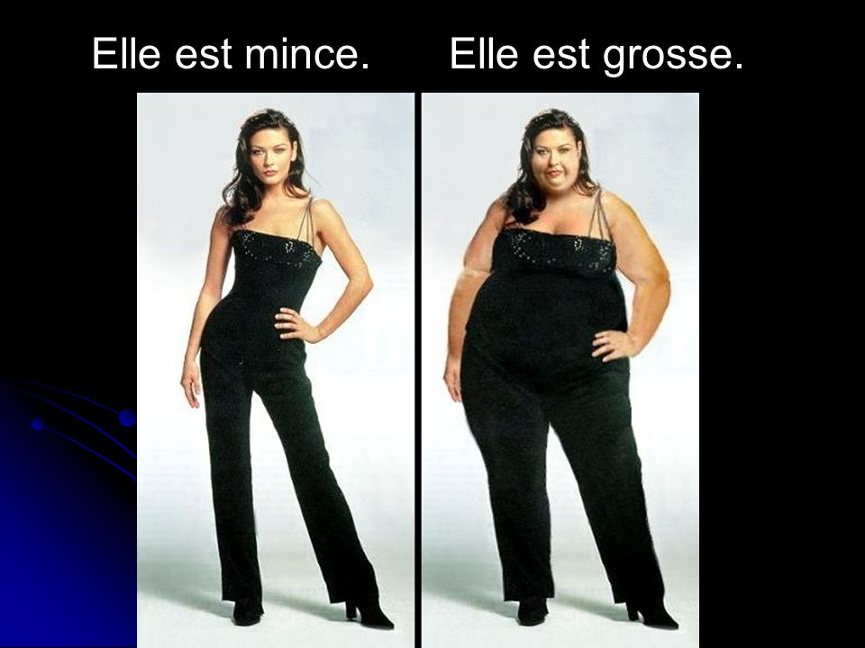 Elle est mince. Elle est grosse.