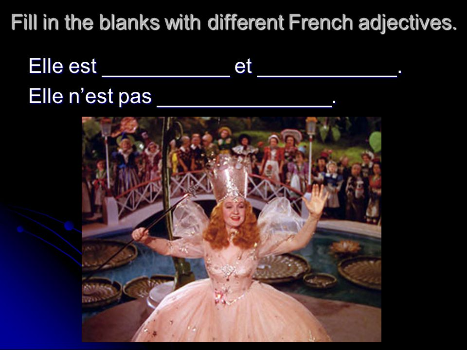 Fill in the blanks with different French adjectives.