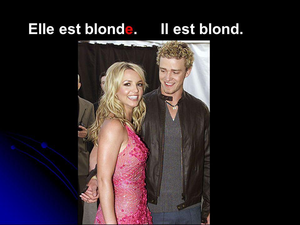 Elle est blonde. Il est blond.