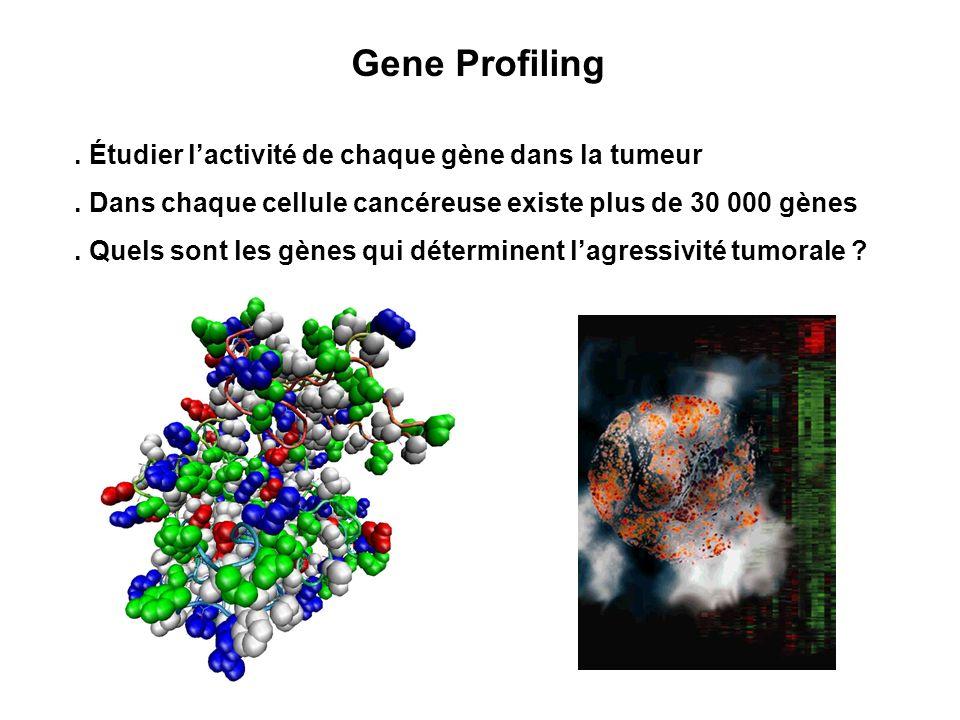 Gene Profiling . Étudier l'activité de chaque gène dans la tumeur