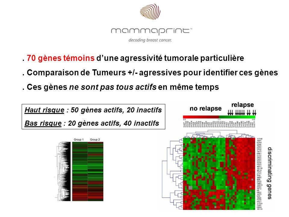 . 70 gènes témoins d'une agressivité tumorale particulière