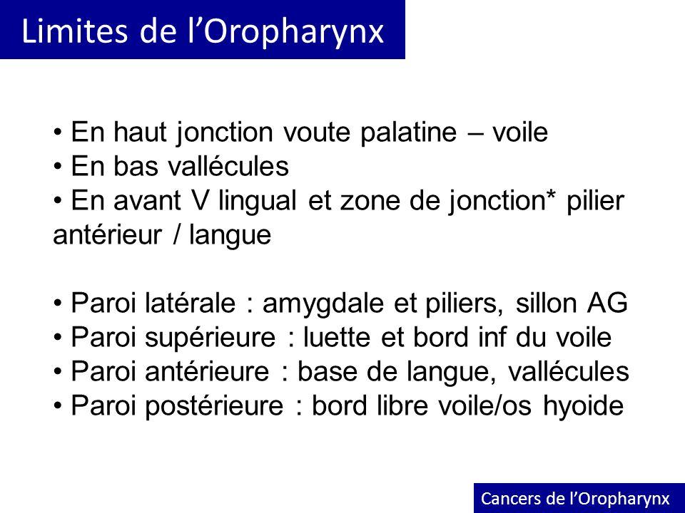 Limites de l'Oropharynx