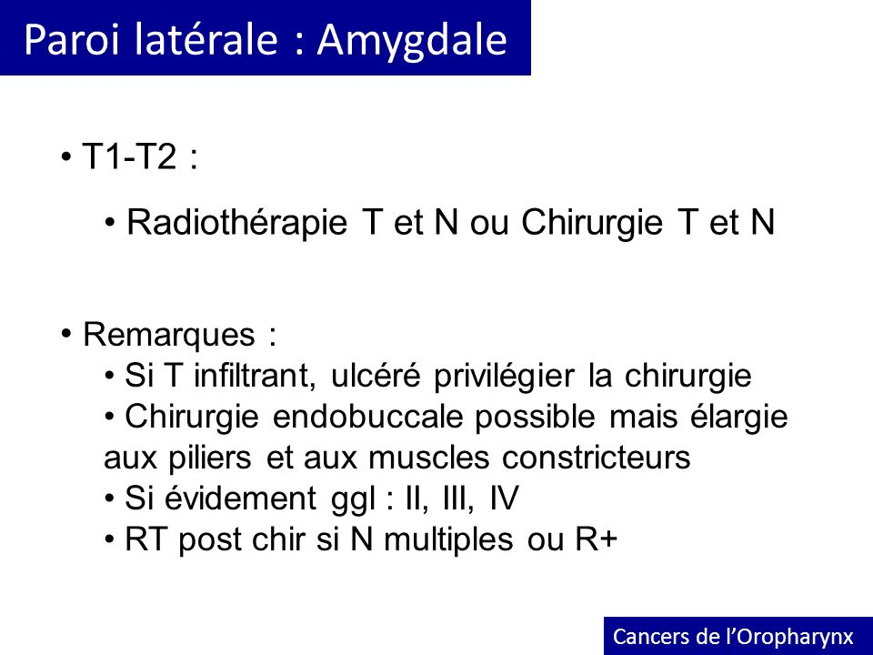 Paroi latérale : Amygdale