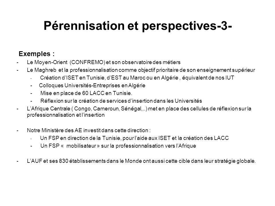 Pérennisation et perspectives-3-