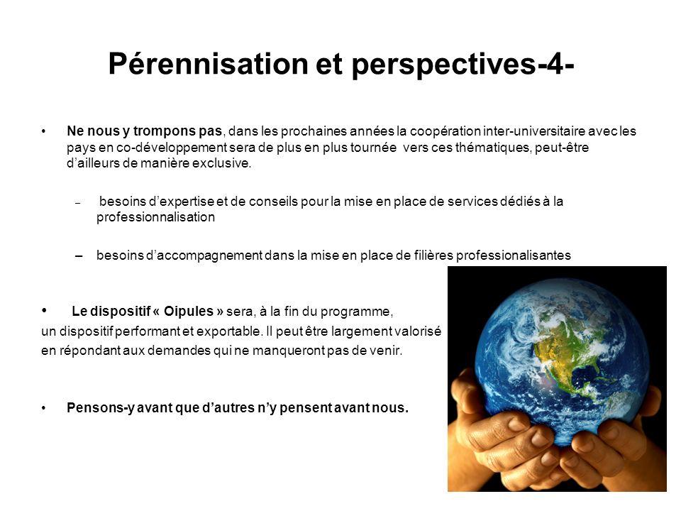 Pérennisation et perspectives-4-
