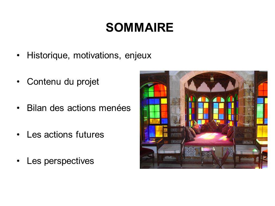 SOMMAIRE Historique, motivations, enjeux Contenu du projet