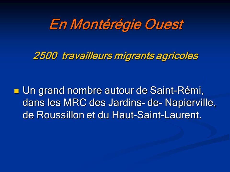 En Montérégie Ouest 2500 travailleurs migrants agricoles