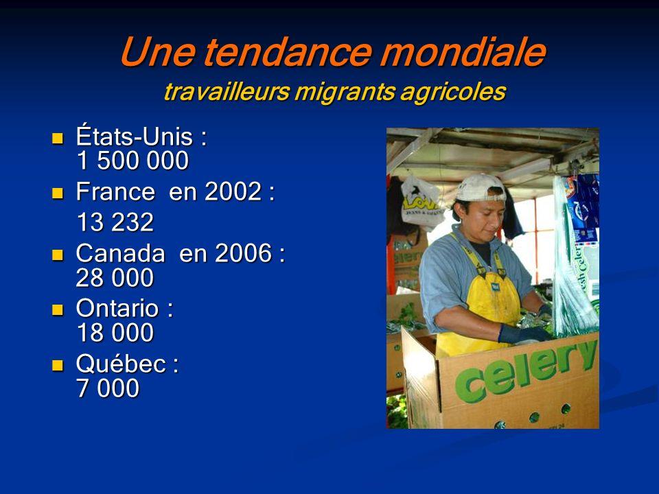 Une tendance mondiale travailleurs migrants agricoles
