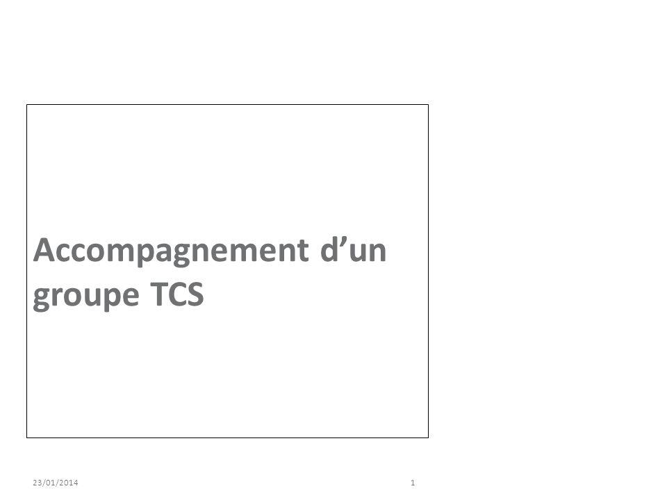 Accompagnement d'un groupe TCS