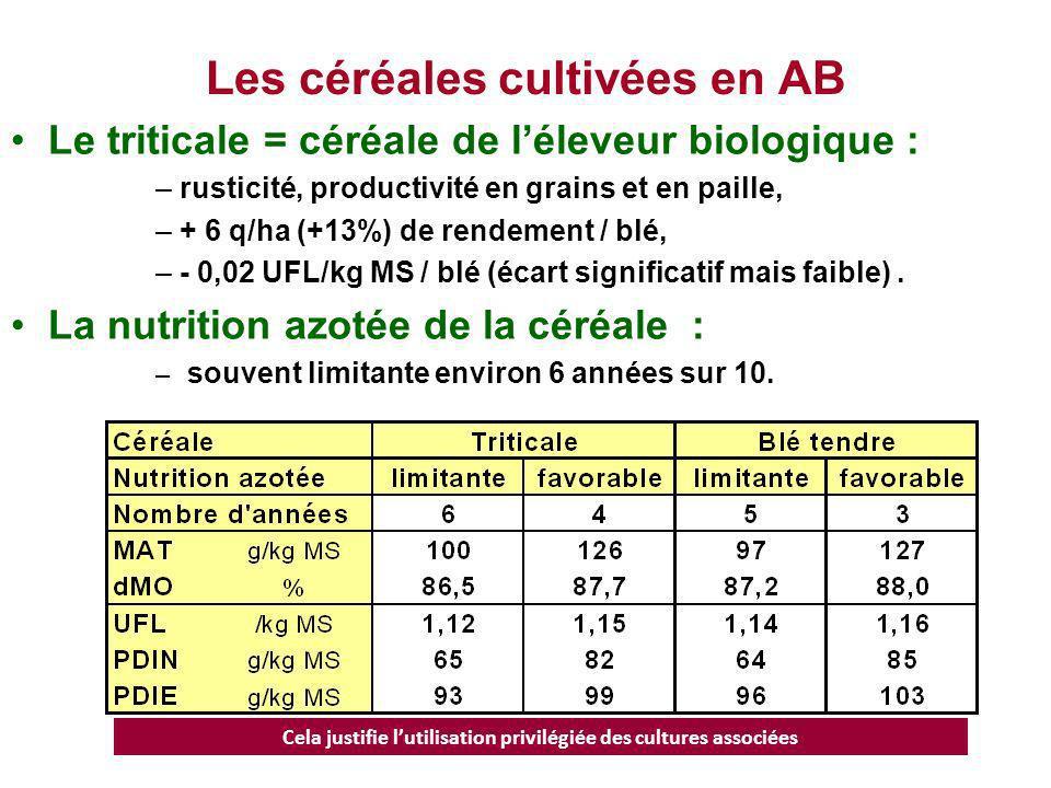 Les céréales cultivées en AB