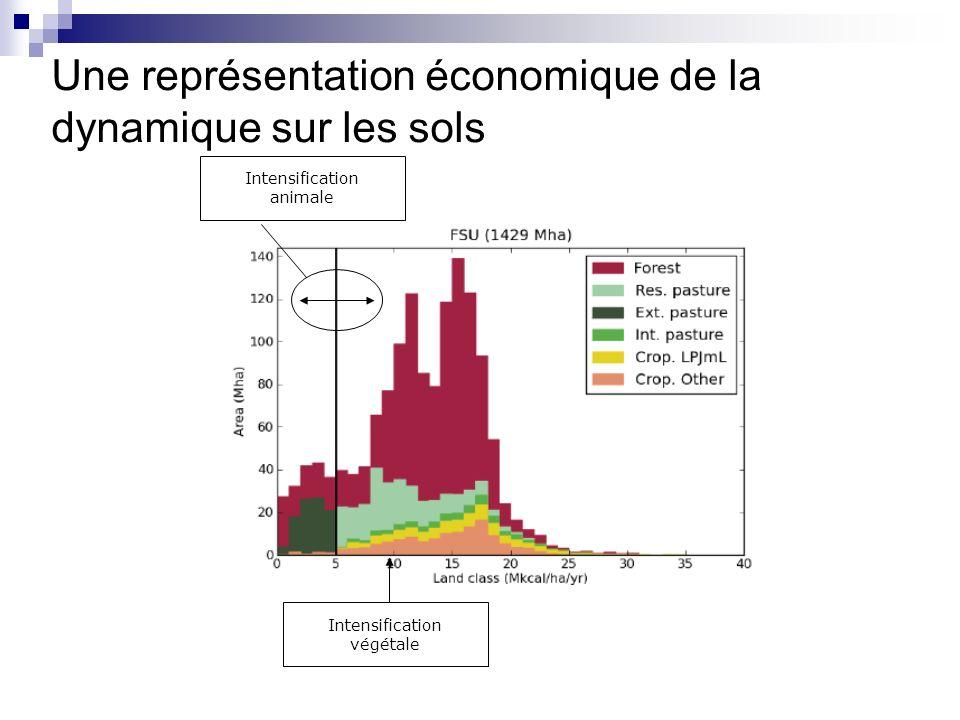 Une représentation économique de la dynamique sur les sols