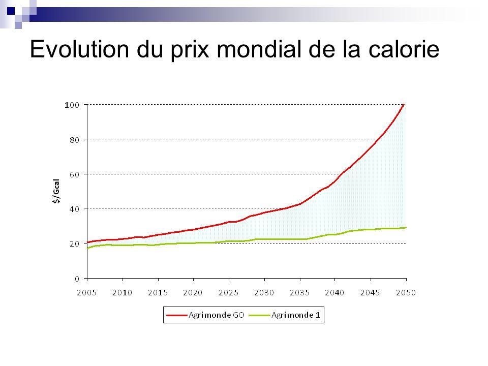 Evolution du prix mondial de la calorie