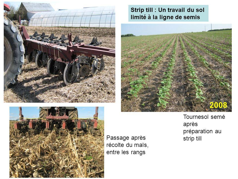 2008 Strip till : Un travail du sol limité à la ligne de semis