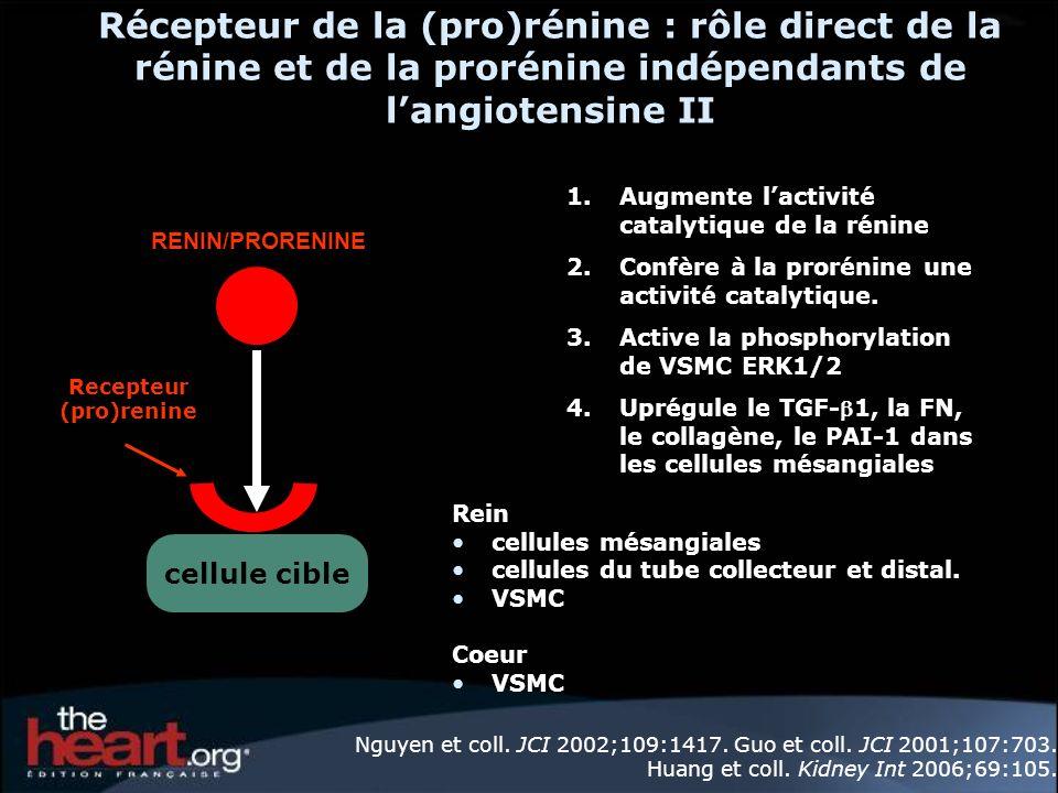 Recepteur (pro)renine
