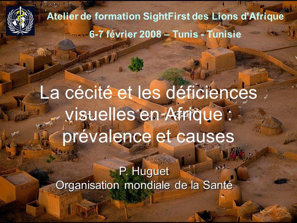 Atelier de formation SightFirst des Lions d Afrique