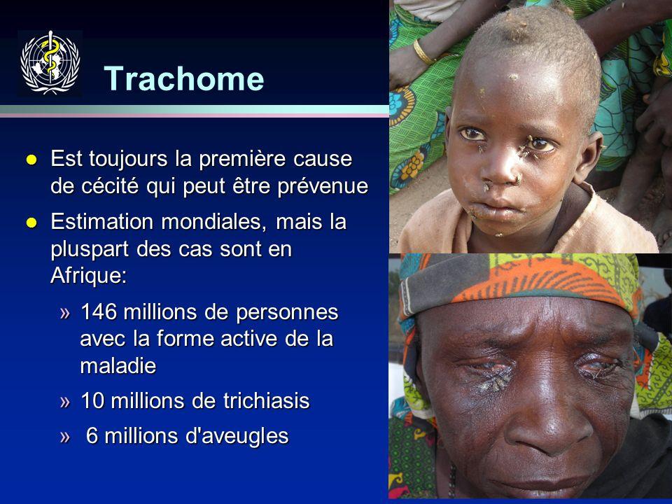 Trachome Est toujours la première cause de cécité qui peut être prévenue. Estimation mondiales, mais la pluspart des cas sont en Afrique: