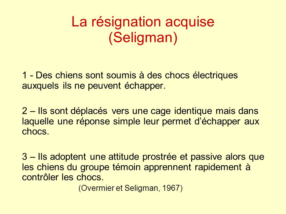 La résignation acquise (Seligman)