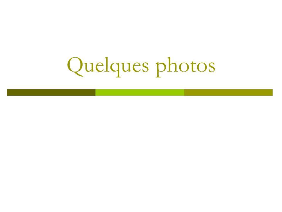 Quelques photos