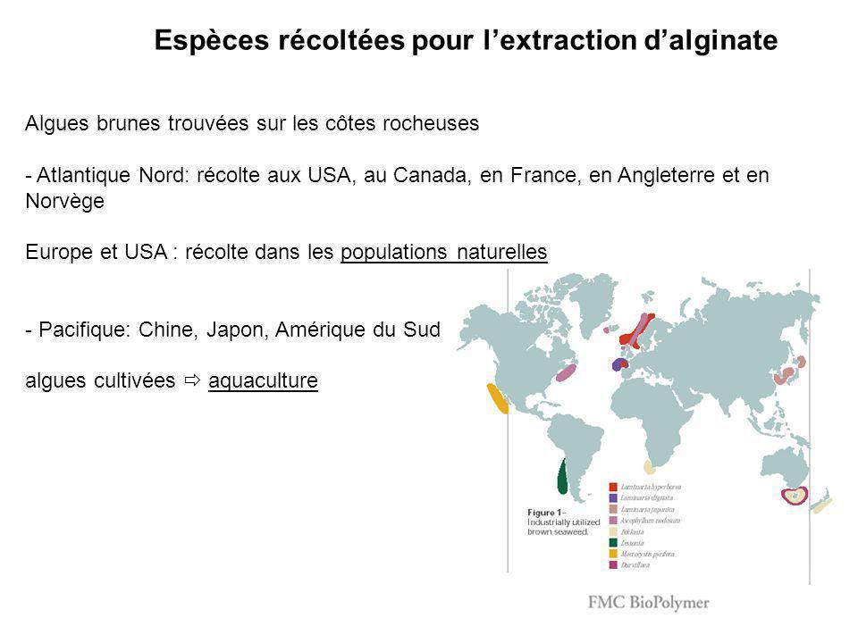 Espèces récoltées pour l'extraction d'alginate