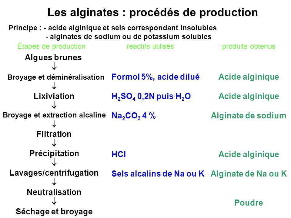Les alginates : procédés de production