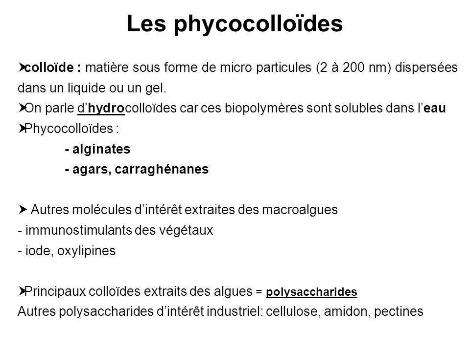 Les phycocolloïdes colloïde : matière sous forme de micro particules (2 à 200 nm) dispersées dans un liquide ou un gel.